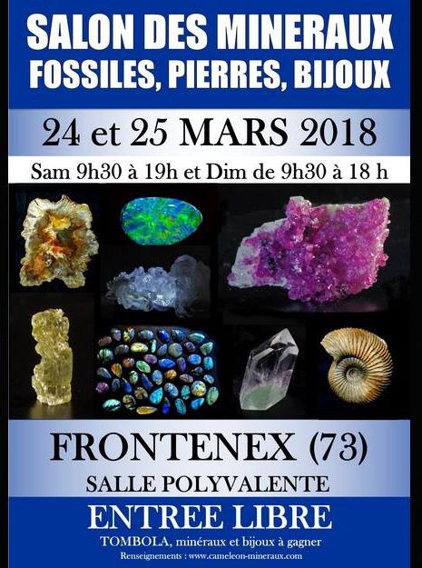 Salon de minéraux Frontenex